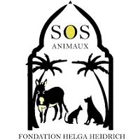 fondation-sos-animaux-lesnereideslovesanimals