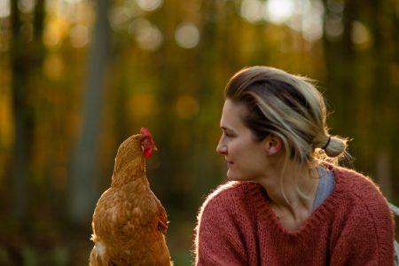 Aurelie et ses poules